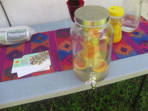 Fruit infused water provided a refreshing drink alongside our brunch.